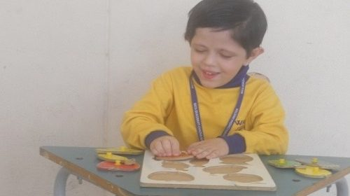 Therapy program of MBCN - Early Intervention