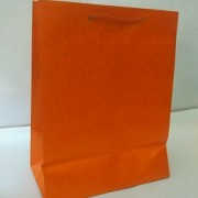 Paper Bag - Set of 15