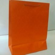 Paper Bag - Set of 15